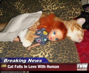Breaking News - Cat Falls In Love With Human