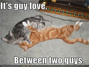 It's guy love,  Between two guys.