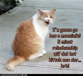 I'z gonna go has a meeninful 5 minut relashunship wif dat hot kitteh nex dor... brb!
