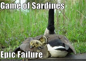 Game of Sardines  Epic Failure