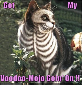 Got                                  My  Voodoo-Mojo Goin' On !!