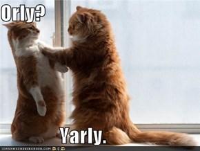 Orly?                 Yarly.