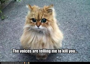 The voices are telling me to kill you...