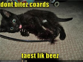 dont bitez coards  taest lik beez