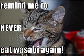 remind me to NEVER eat wasabi again!