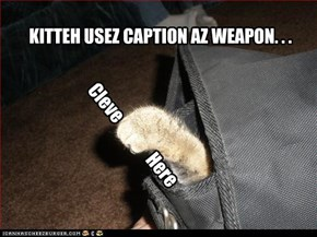 Kitteh usez caption az weapon. . . .