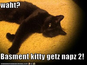 waht?  Basment kitty getz napz 2!