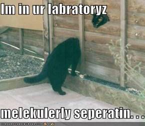 Im in ur labratoryz  melekulerly seperatin. . .