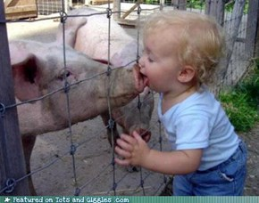 Mmm... Bacon!