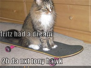 fritz had a dream  2b da nxt tony hawk