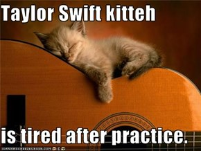 Taylor Swift kitteh  is tired after practice.