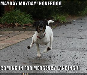 MAYDAY MAYDAY! HOVERDOG  COMING IN FOR MERGENCY LANDING!!!