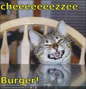 cheeeeeeezzee  Burger!