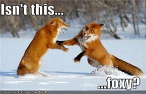 Isn't this...  ...foxy?