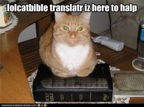 lolcatbible translatr iz here to halp