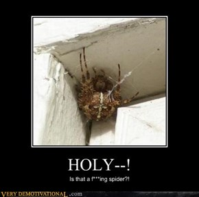 HOLY--!