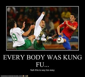 EVERY BODY WAS KUNG FU...