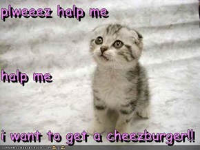plweeez halp me halp me i want to get a cheezburger!!