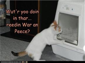 Wut'r yoo doin in thar... reedin War an Peece?