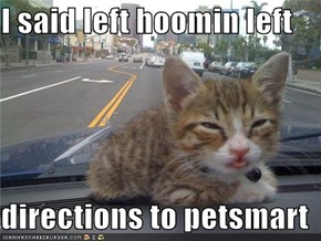 I said left hoomin left  directions to petsmart