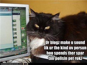 Ur blogz make u sound lik ur the kind uv persun hoo spends ther spar tim polisin pet rokz