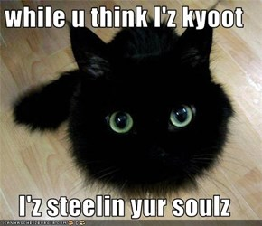while u think I'z kyoot  I'z steelin yur soulz