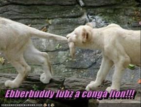 Ebberbuddy lubz a conga lion!!!