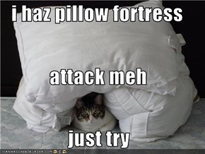 i haz pillow fortress attack meh just try
