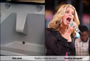 this sink Totally Looks Like Jessica simpson