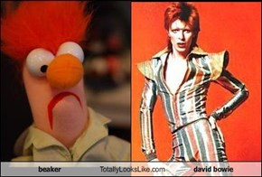 beaker Totally Looks Like david bowie
