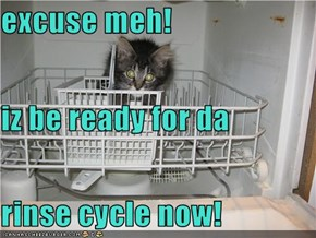 excuse meh!  iz be ready for da rinse cycle now!