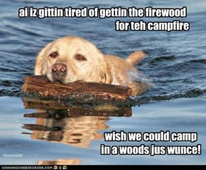 ai iz gittin tired of gettin the firewood                                                     for teh campfire