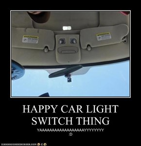 HAPPY CAR LIGHT SWITCH THING