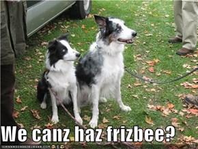 We canz haz frizbee?