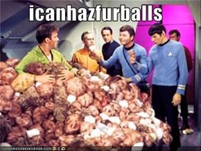 icanhazfurballs