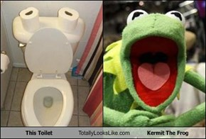 This Toilet Totally Looks Like Kermit The Frog