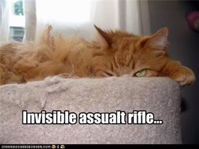 Invisible assualt rifle...