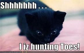 Shhhhhhh . . .  I iz hunting Toes!