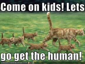 Come on kids! Lets  go get the human!