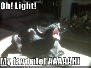 Oh! Light!  My favorite! AAAAAH!