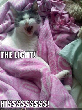 THE LIGHT! HISSSSSSSSS!
