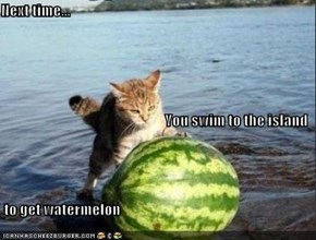 Next time... You swim to the island  to get watermelon