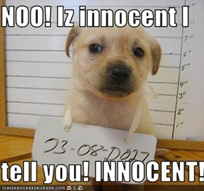 NOO! Iz innocent I  tell you! INNOCENT!