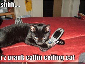 shhh....  i'z prank callin ceiling cat