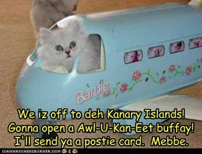 We iz off to deh Kanary Islands!