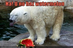 Ha! U no haz watermelon