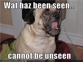 Wat haz been seen...  cannot be unseen