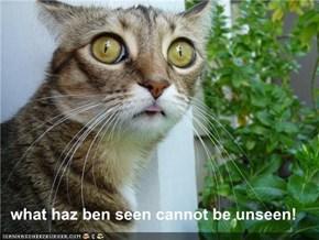 what haz ben seen cannot be unseen!