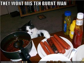 THEY WONT MIS TEH BURNT WAN