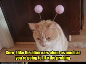 Sure, I like the alien ears about as much as you're going to like the probing.